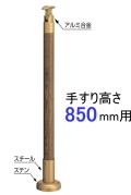 shicyu850.jpg